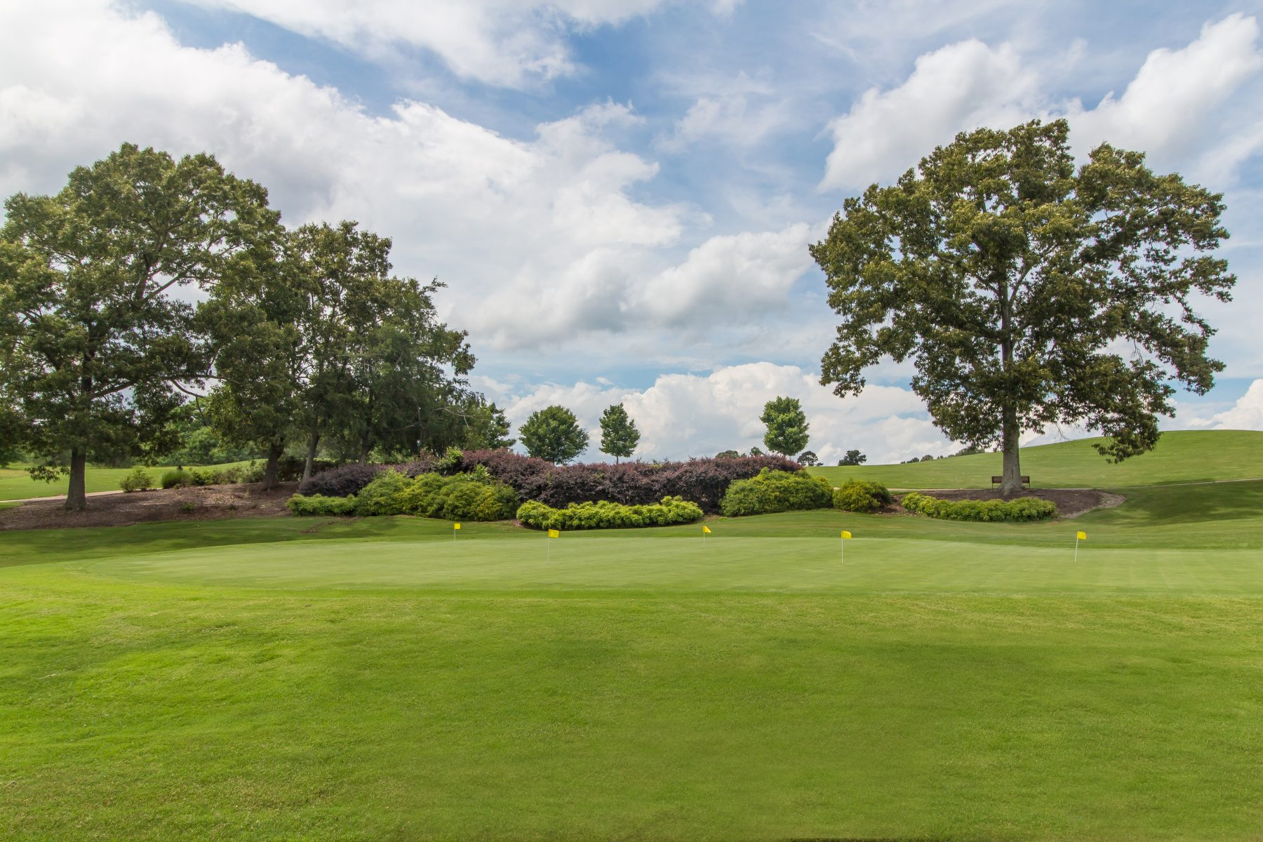 Traditions of Braselton Putting Green